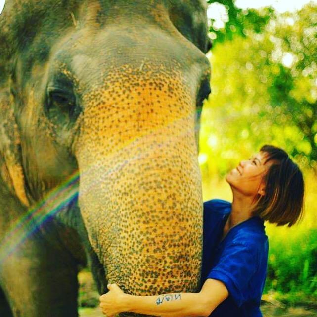 Winona- elephant